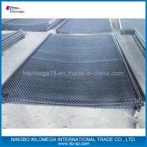 Screen Mesh Supplier for The Mining pictures & photos