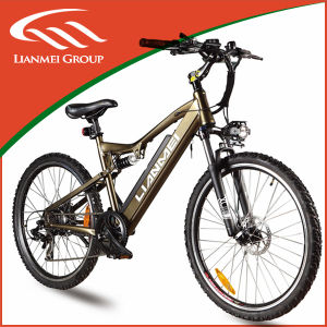 48V500W Electric Bike pictures & photos
