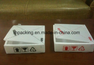 Pink Twinwall PP Case, Plastic Carton, Coroplast Case Manufacturer/PP Fruit Case pictures & photos