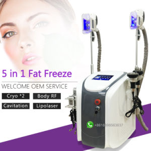 S16 Newest 4 in 1 Fat Freezing Cryolipolysis Zeltiq Cool Sculpting Machine pictures & photos