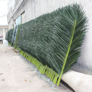 Realistic Artificial Coconut Palm Tree Leaf pictures & photos