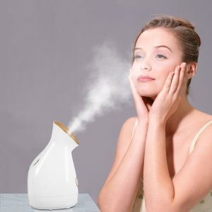 Hot Facial Steamer with Nano Ion Platinum Facial Steamer pictures & photos