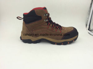 Genuine Leather Composite Toe Protection Safety Footwear (16101) pictures & photos