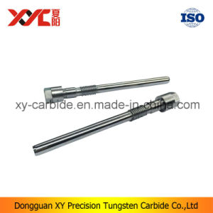 Customed Tungsten Carbide Punches in China pictures & photos