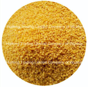 Chinese Hulled Millet Hot Seller
