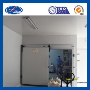 Cold Room Manufacturer pictures & photos