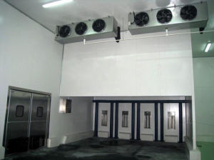 Chiller Room (LEO) pictures & photos