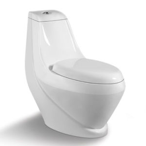 Watermark Washdown One Piece Ceramic Toilet (ST-1025)