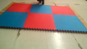Interlocking Eco-Friendly EVA Foam Taekwondo Mat pictures & photos