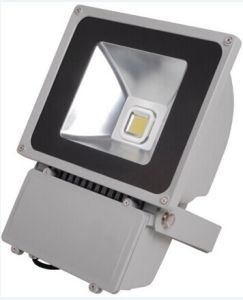 CE RoHS12V24V48V100W LED Floodlight with Two Years Warranty