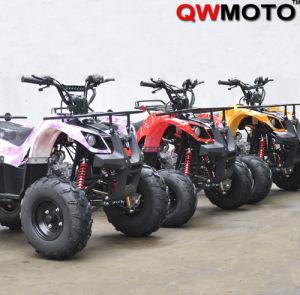 CE 110CC 125CC ATV Quad Bike Automatic (QW-ATV-02C)