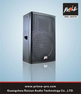 Multi Function, High Quality PRO Audio System for Conference Room Fpr-315 pictures & photos