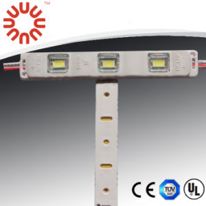CE/RoHS SMD LED DC12V Waterproof LED Module pictures & photos