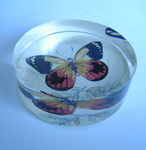 Transparent Flat Crystal with Colored Butterfly (CP4011) pictures & photos