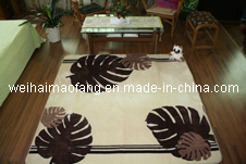 Raschel Mink Shaggy Carpet for Decoration pictures & photos