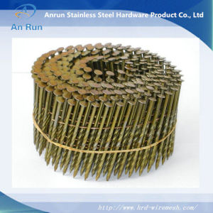 Galvanized Roofing Coil Nails Galvanized Roofing Coil Nail pictures & photos