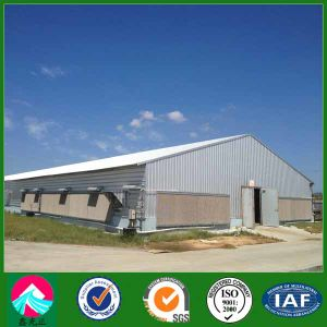 Light Steel Chicken House with Corrugated Steel Sheet and Fiber Glass Insulation Wall (XGZ-pH005) pictures & photos