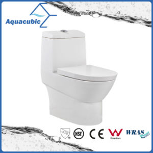 Washdown Dual Flush One Piece Ceramic Toilet (ACT8838) pictures & photos