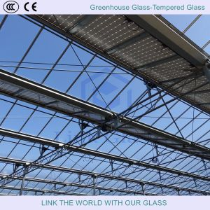 Greenhouse Glass and Showers Glass with Tempered Glass pictures & photos