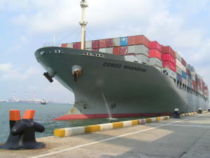 Shipping From China to Mundra Chennai Logistics Agent pictures & photos