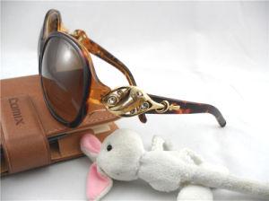 Popular Sunglasses (YM01-0141)
