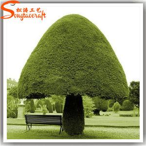 Distinctive Design Cheap Decorative Artificial Topiary Plants pictures & photos