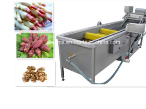 High Quality Vegetable and Fruits Air Bubble Washing Machine pictures & photos