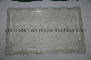 High Technology Large Size Plastic Tray by China Manufacturer pictures & photos