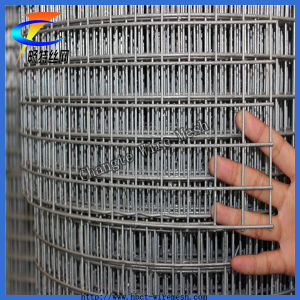 ISO9001 Anping Facotry Galvanized Welded Wire Mesh pictures & photos