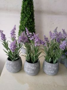 Artificial Flowers of Lavender Gu916215112 pictures & photos