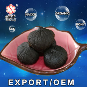 OEM Good Taste Fermented Peeled Single Black Garlic (2kg/bag) pictures & photos