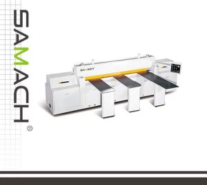 High Accurate Panel Saw Rcj2700 for ABS, PVC, Perpex Sheet, Soild Wood pictures & photos