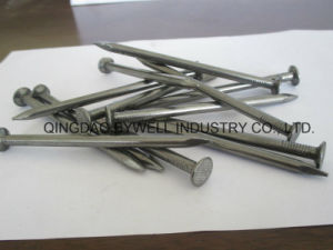Wire Nails Common Nails with Best Quality and Competitive Price (from 3/8 inch to 6 inches) pictures & photos