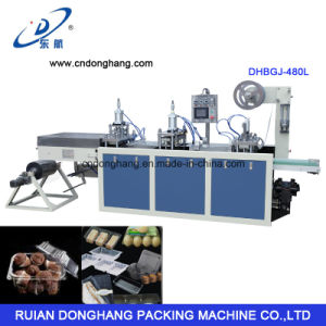 Donghang Plastic Snack Box Container Tray Making Machine (DHBGJ-480L) pictures & photos