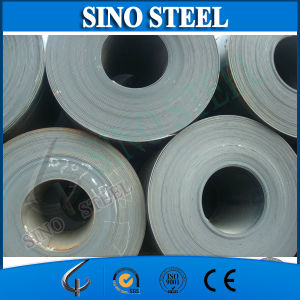 Hot Rolled Steel Coil for Ship Plate pictures & photos