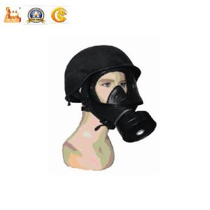 Police Equipment Filtered Gas Mask for Military pictures & photos