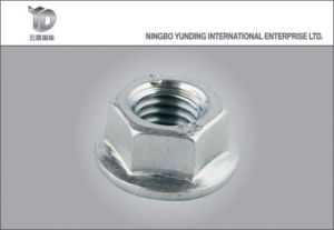 Hex Flange Nut Flange Manufacturer High Quality pictures & photos