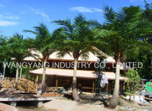 Garden Home Decoration Wholesale Plastic Outdoor Synthetic Coconut Palm Tree pictures & photos