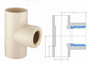 CPVC ASTM2846 Pipe Fitting Female Tee Copper Thread (G11) pictures & photos