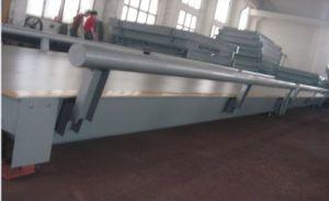 Weighing platform SCS-TC01 pictures & photos