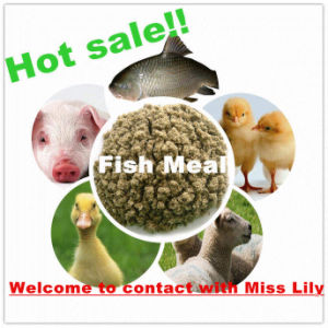 Fish Meal with Lowest Price for Animal Feed pictures & photos