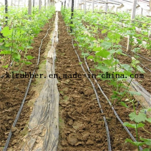 Drip Irrigation Hose for Farm Irrigation pictures & photos