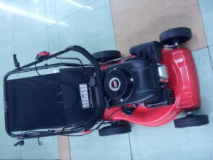 118cc 2.95kw Lawn Mower pictures & photos