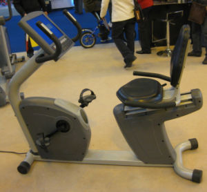 CE Approved Commercial Recumbent Bike (SK-ER2) pictures & photos