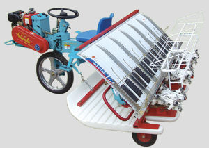 6 Rows High Speed Transplanter (2ZB-6300) pictures & photos