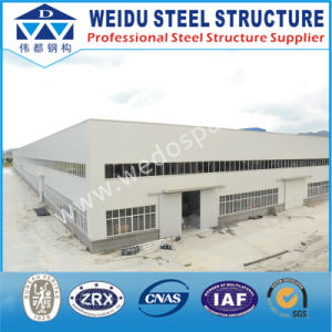 Steel Structure for The Factory or Other House (WD100601)