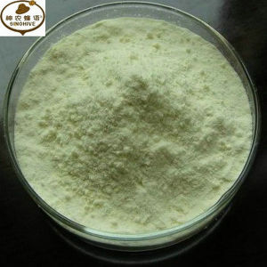 100% Natural Lyophilized Royal Jelly Powder