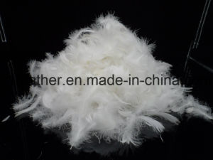 4-6 Cm Washed White Duck Feather (IDFL, USA-2000, EN12934, JIS, GB/T17685-2016) pictures & photos