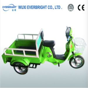 Ce Electric Tricycle Pedicab with Man Power