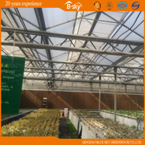 High Quality Auto environment Control Glass Greenhouse pictures & photos